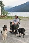 Wheelchair with dogs